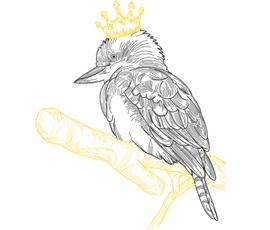 kookaburra-logo-270x230